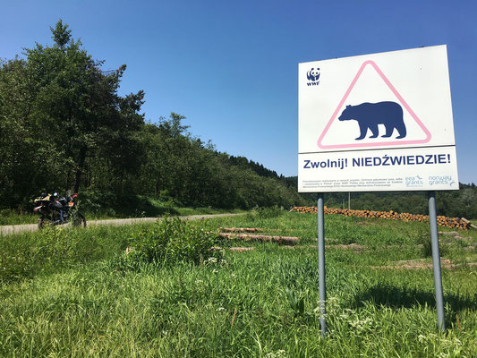 Beware of the Bear / Polen