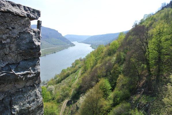Aussicht von der Burgruine Hinteraus, Spitz an der Donau
