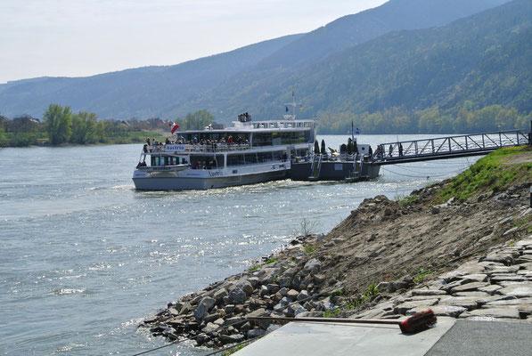 Donauschiff bei Spitz