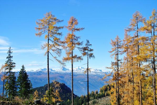 Blick von der Tauplitzalm Alpenstraße
