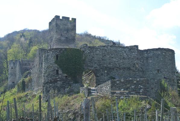 Burgruine Hinteraus, Spitz an der Donau