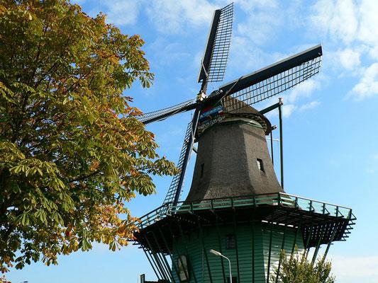 Mühle bei der Julianabrug - Zaanstad