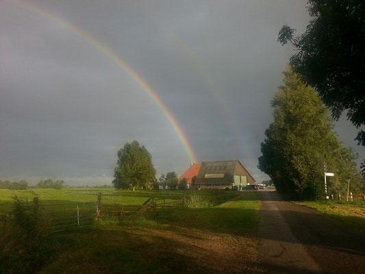 Regenbogen über De Hoek Watersport