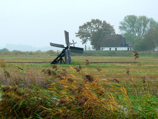 Am Kaanal Steenwijk - Ossenzijl