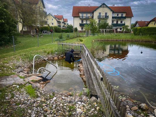 Teichreinigung Gerasdorf