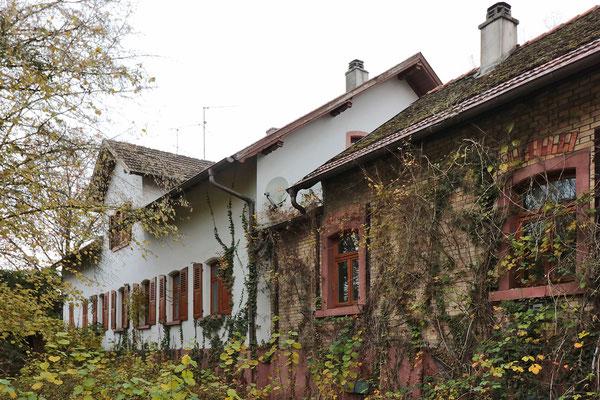"""Der weitestgehend ursprüngliche Zustand des """"Alten Forsthauses"""" von der Rückseite."""