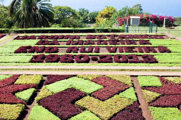 06Botanischer Garten, MADEIRA-WelschB