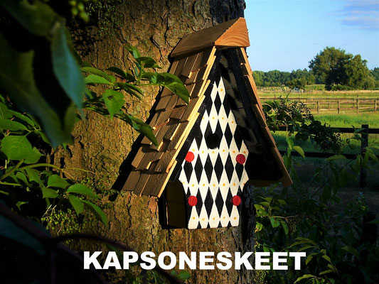 KAPSONESKEET