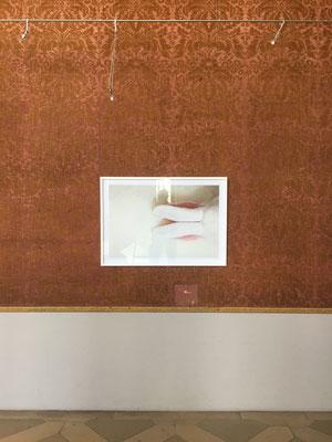 Stille, in der Galerie Schloss Ratibor