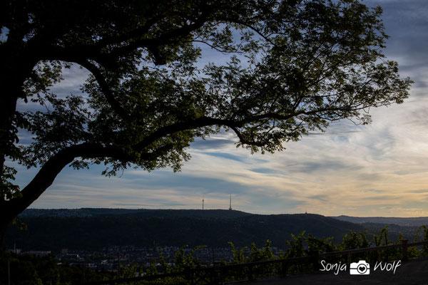 Blick zum Stuttgarter Fernsehturm