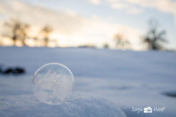gefrorende Seifenblase