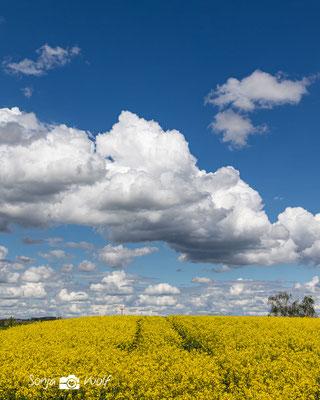 Wolken & Raps