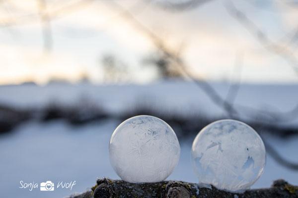 gefrorende Seifenblasen