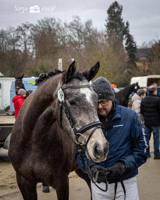 Pferdeprämierung