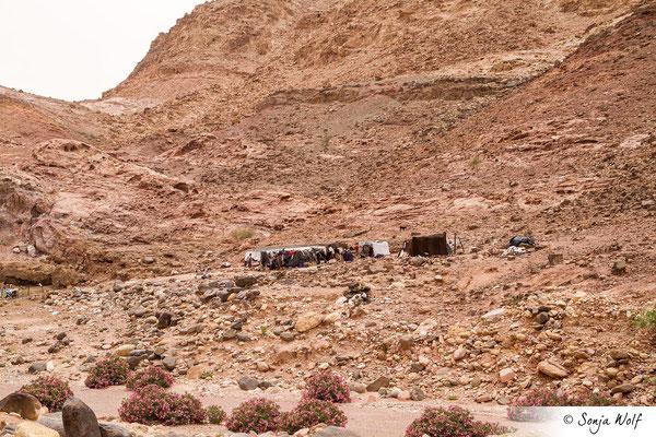 Beduinen-Zelte