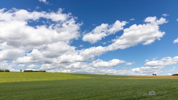 Wolken & Felder