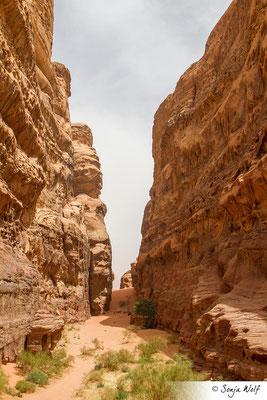 Wanderung im Wadi Rum