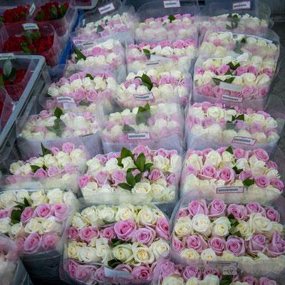 Rosen fertig für den Versand