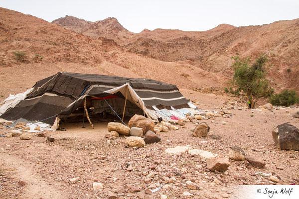 Beduinen-Zelt für die Tiere