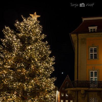 Weihnachtsbaum am Landgericht Ellwangen