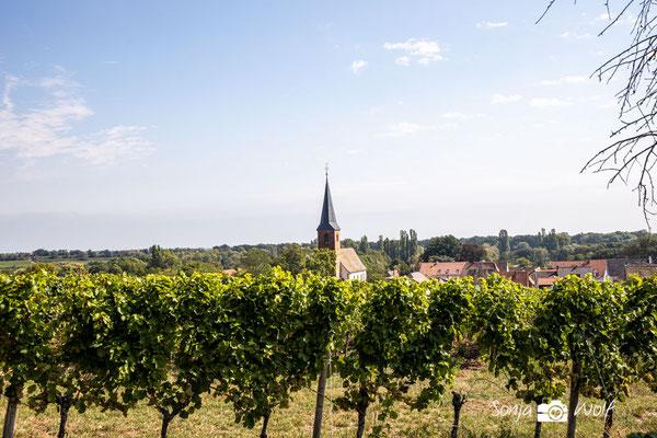 Lage Forster Kirchenstück