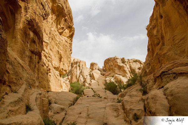 Nabatäerstadt Petra
