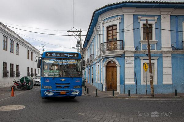 typischer Linienbus