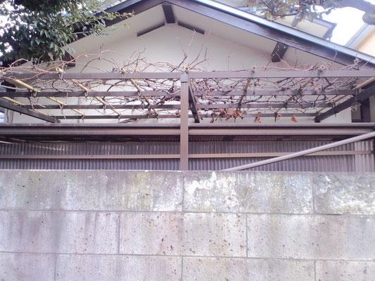 ぶどう棚アルミ支柱塩ビ竹