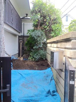 掘り取り完了