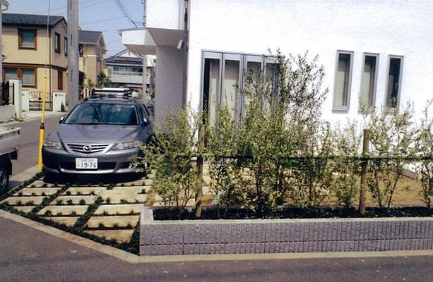 駐車スペースのコンクリート板の間は玉竜