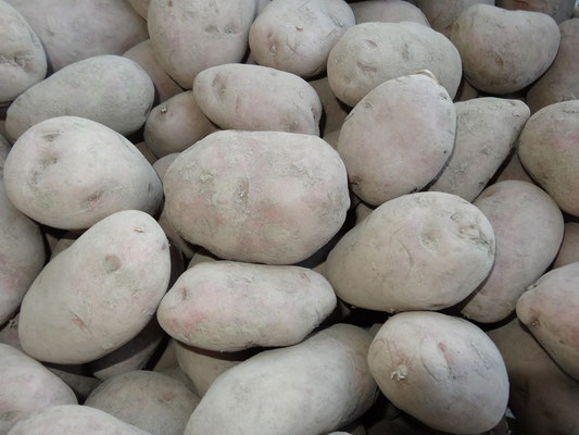 """Kartoffeln """"Désirée"""" - die feine Vielseitige für alle Gerichte"""