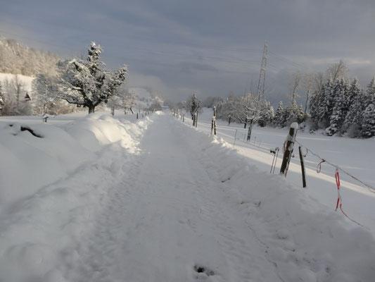 zauberhafte Winterlandschaft Büebliswil