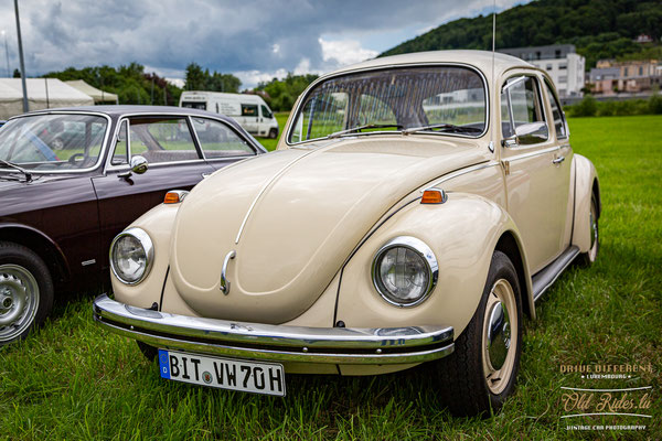 Young & Oldtimer Day Steinsel