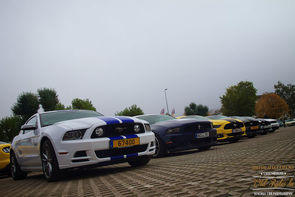 International Mustang Meeting 2017