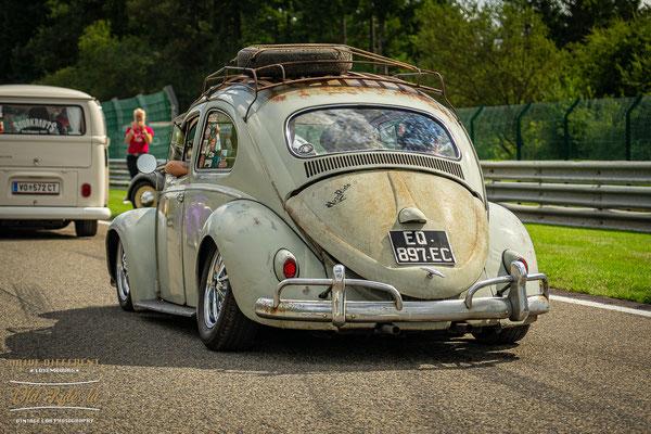 Le Bug Show