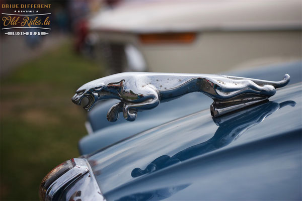 Young&Oldtimer Day Steinsel 2017