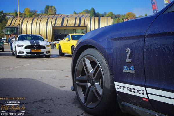 International Mustang Meeting 2017