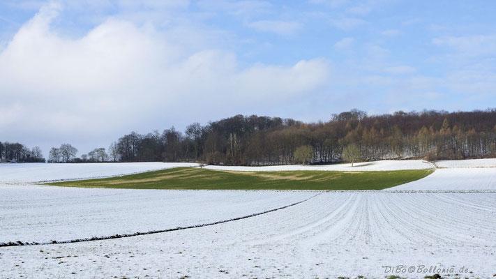 Der Schnee fällt nicht überall hin :-)