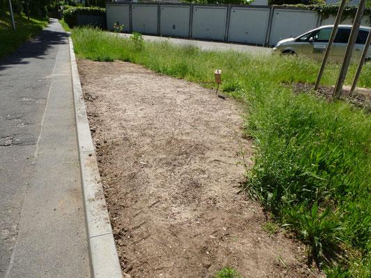Wir haben weitere Teile des Beets mit Sand abgemagert und mit Wildblumen-Samenmischungen eingesät.