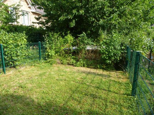 im Sommer 2015 gibt es nur Rasen