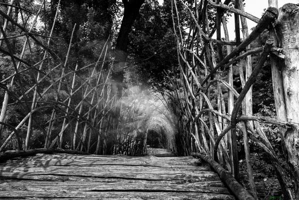 """Maratona fotografica """"Ponte San Vigilio"""""""
