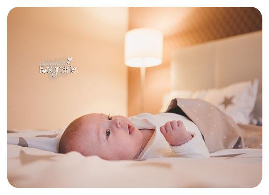 homeshooting, babyfotos zwickau, newborn, lifestyle sachsen, fotografie, lichtbildkuenstlerei, photography, gera, jena, Glauchau, Erzgebirge, Stollberg, Chemnitz