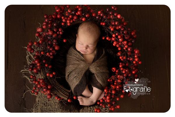 Baby Neugeborenenfotografie Fotografie Schwangerschaft Zwickau Familienshooting Kinderbilder Fotograf Daniela Rettke Hebamme Lichtbildkünstlerei Lichtbildkuenstlerei