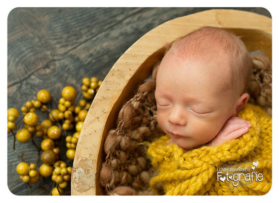 Baby Neugeborenenfotografie Fotografie Schwangerschaft Zwickau Familienshooting Kinderbilder Fotograf Daniela Rettke Hebamme Lichtbildkünstlerei Lichtbildkuenstlerei Newborn
