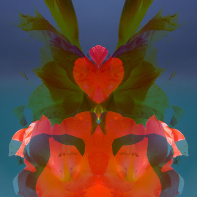Herz-Wesen