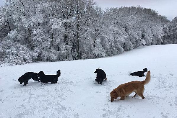 """Frank """"Joy""""( 2. von links) , Schwester Fräulein (links) , Papa Baki ( hinten im Schnee)"""
