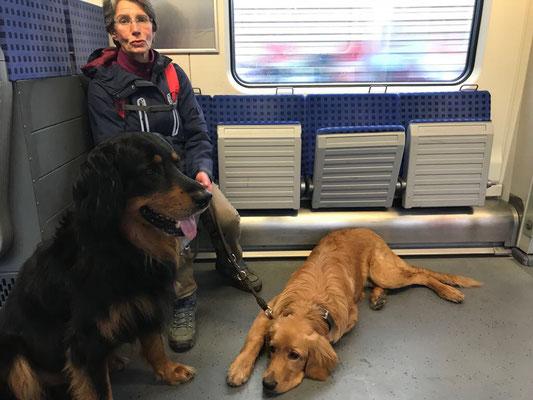 Die erste Zugfahrt