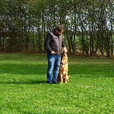 Training mit fremdem Hundeführer