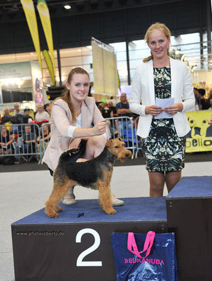 2. Platz Juniorhandlingfinale CACIB Bremen 2017