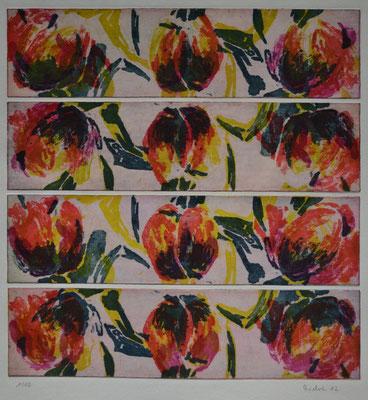 Metamorphose Tulipan